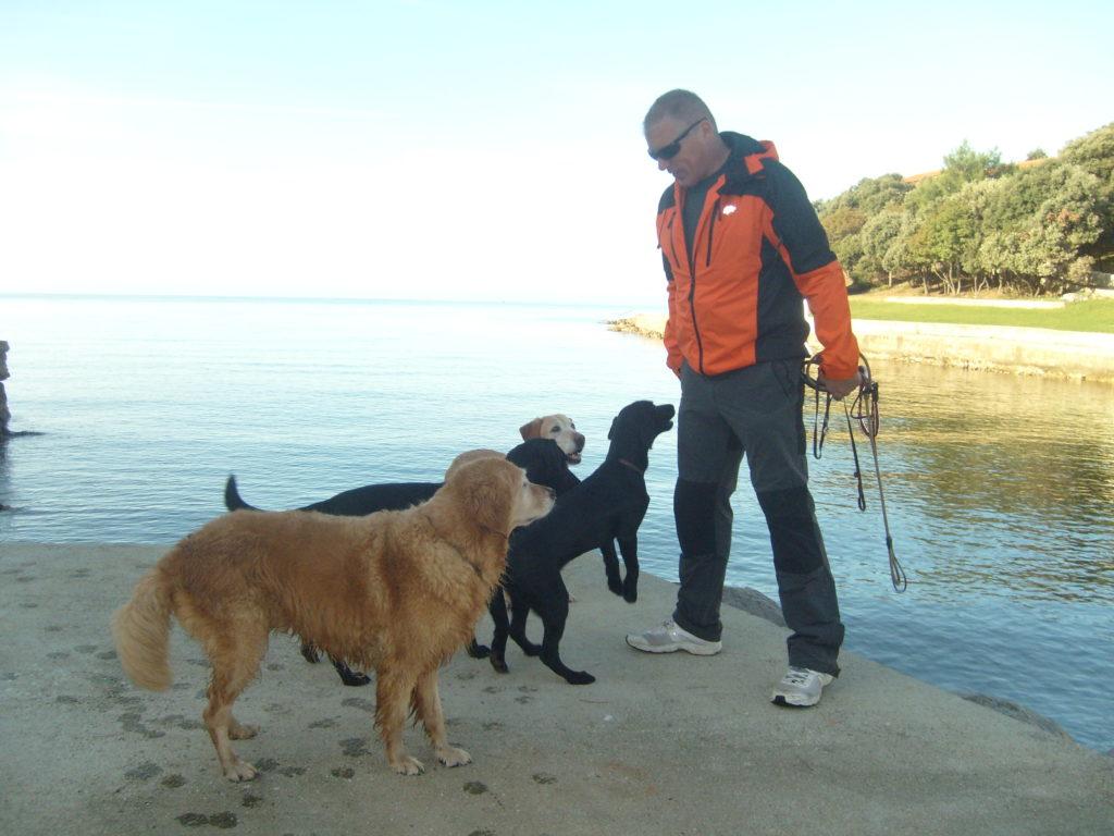 Socializacija psa