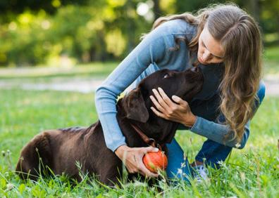 Pasja šola Burja na obali - obala - koper - šolanje psov